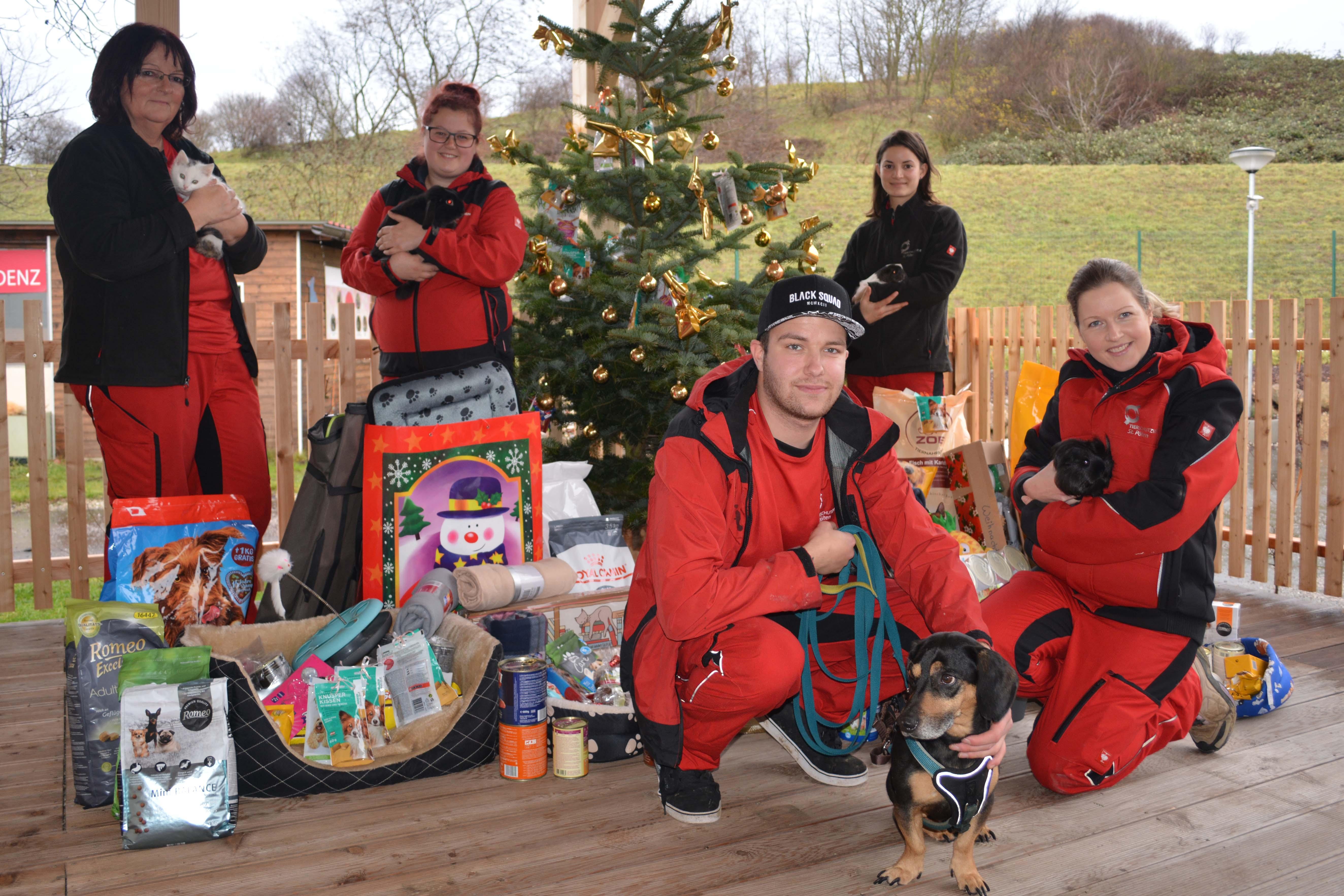 Die Weihnachtsgeschenke.Danke Für Die Weihnachtsgeschenke Tierschutzverein St Pölten